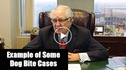 Dog Bite Case with Attorney Jim Slater